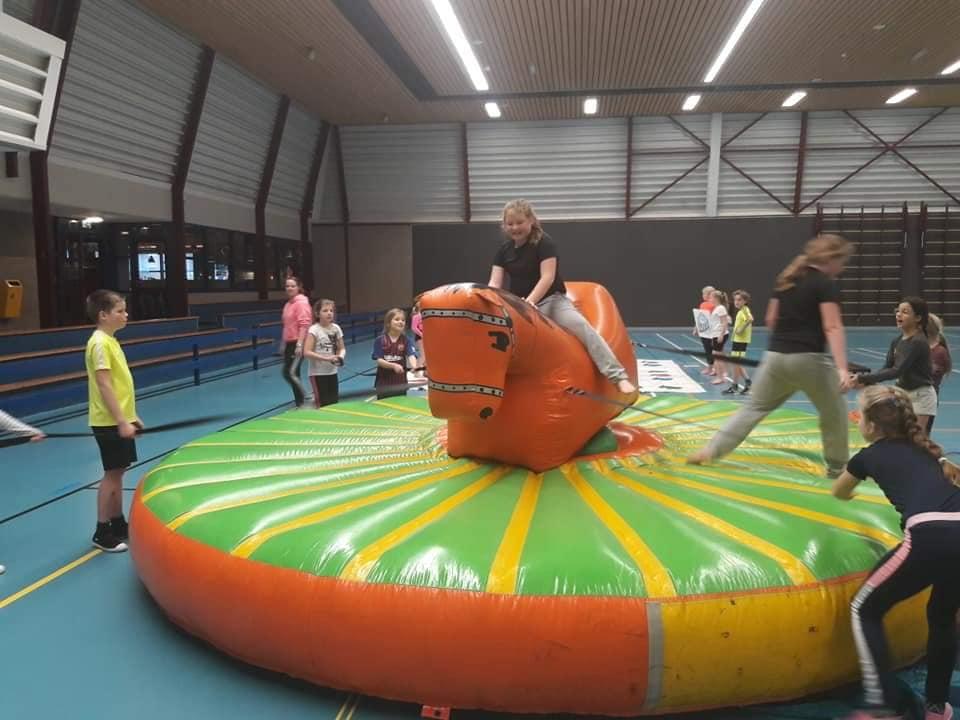 Rodeo paard springkussen Drenthe Groningen